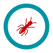 "Badge icon ""Ant (4744)"" provided by Olivier Guin, from The Noun Project under Creative Commons - Attribution (CC BY 3.0)"